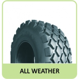 23.1-30 12PR TT GOODYEAR ALL WEATHER R3